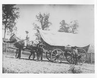Three men with covered wagon and mules