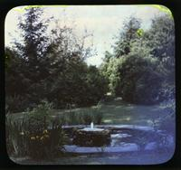 Pond and fountain with yellow iris in gardens of Alice Lea Spruance at The Patch