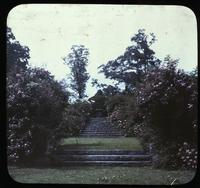 Entrance to rose garden at Clifton, residence of William F. Sellers