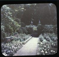 Walled rose garden at Winterthur, estate of Henry Francis du Pont