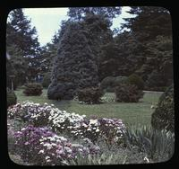 The English garden at Clifton, residence of William F. Sellers