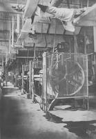 Line of machinery in Rockford bloom room