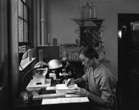 Employee at work at the Haskell Laboratory of Industrial Toxicology