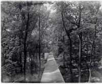 Pathway through trees at DuPont Company Experimental Station, Wilmington, Delaware