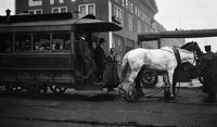 Horse-drawn trolley in New York City