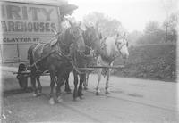 Three horses or mules pulling Security Storage Warehouses wagon