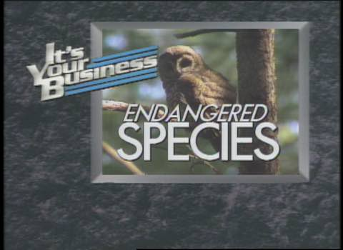 It's Your Business: Endangered Species #579