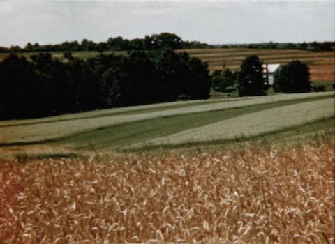 Soil Conservation Pays