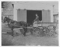 Joseph Maxwell with his horse and cart