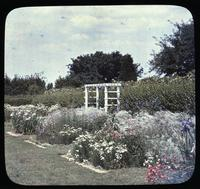 Garden of Mrs. H. P. Scott at Lexington