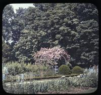 Gardens at Longwood, estate of Mr. and Mrs. Pierre S. du Pont