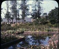 Lily and lotus pool with annual border in gardens of Mrs. Harry G. Haskell at Hill Girt