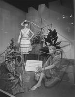 Window display of Everglaze and Ban-Lon sportswear at Zion's Co-operative Mercantile Institution (ZCMI) (Salt Lake City, Utah)