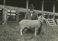 Man with sheep at the Delaware State Fair