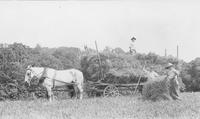 Seal family members loading a haywagon on Locust Knoll Farm