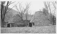Amenia Hot and Cold Charcoal Furnace (Wassaic, N.Y.)