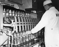 Bill Doran inspecting empty bottles at discharge end of bottle washer at Wawa Dairy Farms milk processing plant