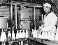 Pete McLean inspecting bottles on the line in filling room at Wawa Dairy Farms milk processing plant