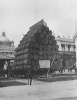 Michigan White Pine at World's Columbian Exposition