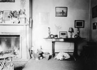 Dog in parlor or sitting room photographed during trip of Charles Augustus Belin