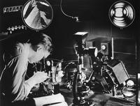 DuPont chemist at work in the laboratory with petrographic microscope
