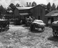 Cotton gin serving local farmers formerly stood on site of Savannah River Plant