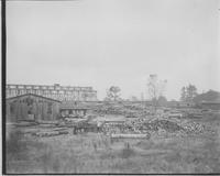 Timber yards at Hoopes, Bro. & Darlington sawmill (Jackson, Miss.) (Dimensions Mill)