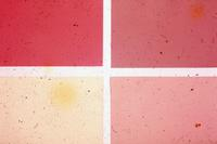Paint sample shades