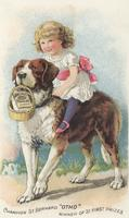 Pearline soap trade card featuring 'Champion St. Bernard 'Otho' winner of 31 first prizes'