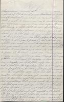 Special investigation report of N. Johnston, 1878-06-21