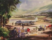 De Havilland Heron : series 1 & 2