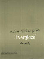 Pen Picture of the Everglaze Family