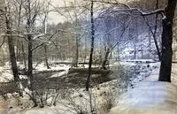 Creek and woods in the snow