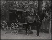 Horse-drawn carriage in front of Belin House at Hagley