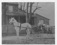 Horse and buggy near Henry Clay, Delaware