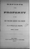 Reports on the property of the New York and Richmond Coal Company