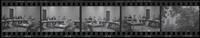 Testimony before Trade Policy Staff Committee (June 1975)