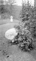 Cortlandt Schoonover as young child investigating plants